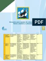Encuesta para Equipo de Educadores - Rama Lobatos y Lobeznas
