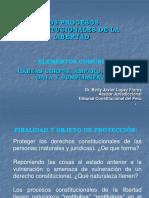 Clase- Procesos Constitucionales Libertad_amparo Contra Normas Legales