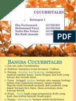 Kelompok 1 CUCUURBITALES.pptx