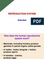 KULIAH 2_Sistem Reproduksi_Overview.pdf