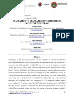 Evaluation to Adaptation of Motherhood
