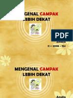 208721307-Campak