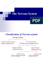Nervous System Physio