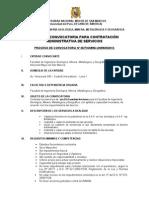 Modelo Bases de Convocatoria CAS