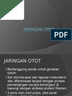 3.1. MUSKULOSCELETAL dr.aswan.ppt
