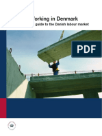 Working in Denmark Brochure