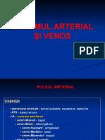 Sistemul arterial si venos.pdf