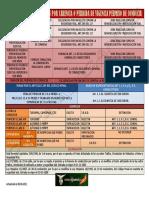 Cuadro-Resumen-Actuacion_Carencia_Permiso_Conduccion.pdf