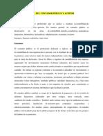 Papel Del Contador Público y Auditor