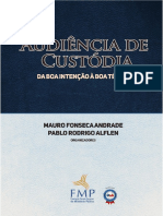 AUDIENCIA DE CUSTODIA.pdf