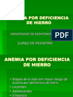 Anemiapordeficienciadehierro 110919155751 Phpapp02(1)