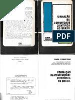 6d-Schwartzman-Formacao científica.pdf