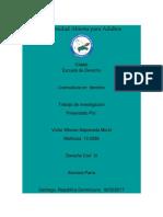 Trabajo Final Derecho Civil III 2017.docx