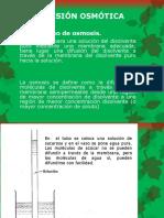PRESIÓN OSMÓTICA.pptx