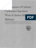 Environment of Calcium Carbonate Deposition West of Andros Island Bahamas