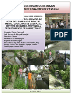 PIP Proyecto de Irrigacion Cascajal -Lambayeque