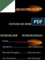 Diapositivas Estudio de Mercado 2005