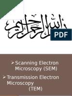 Scanning Electron Microscopy (SEM) and Transmission Electron Microscopy(TEM)