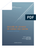 Informe Final Cuenca Coatan