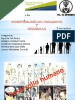 Expo. Desarrollo Humano