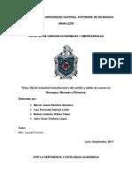 Analisis Del Sector Manufacturero Del Curtido y Adobo de Cuero en Nicaragua