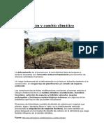 Deforestación y Cambio Climático