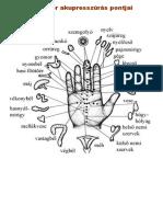 akupresszuras_pontok_a_tenyeren.pdf