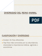 Diversidad Del Reino Animal1