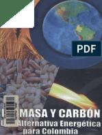 Biomasa y Carbon Una Alternativa