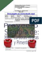 49830152-Proyecto-de-Siembra-de-Caraotas-Negras.doc