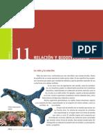 CB_ES6_1P_u11.pdf