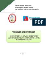 Tdr Gestor Municipal - 1 Ayacucho