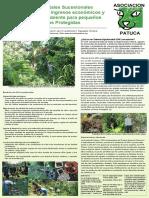 Sistemas Agroforestales Sucesionales.pdf