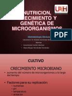 Micro Cultivo