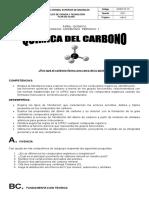 Guia de El Carbono y Sus Compuestos