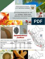 Enteroparasitos en La Sierra Peruana