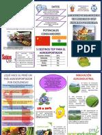 Manual Del Exportador_agroexportaciones i