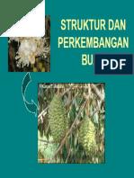 Struktur dan Perkembangan Buah 031014 (3).pdf