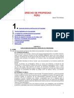 Derecho de Propiedad en El Peru