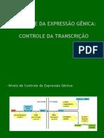 Controle_da_Transcricao
