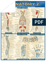 Anatomy Chart www.ebook4doctors.blogspot.com.pdf