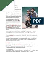 Reglas básicas del béisbol.docx
