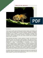 Historia e dados abelhas.pdf
