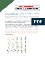 18-sec3b1ales-y-comunicacic3b3n-i-especialidad-desarrollada.doc