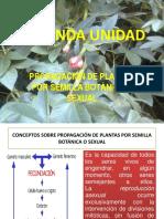 Segunda Unidad - Propagación de Plantas Por Semilla Botánica o Sexual