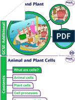 1. Animal and Plant Cells v1.0 (1)
