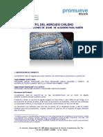 PERFIL_JEANS_CHILE.pdf