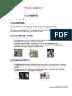 tema 6 los oficios.pdf