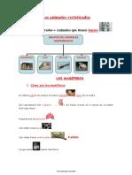 LOS ANIMALES VERTEBRADOS.pdf
