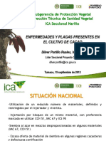 Capacitacion Ica Platano y Cacao(1)
